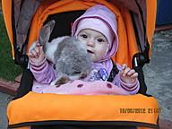 Милашка и кролик